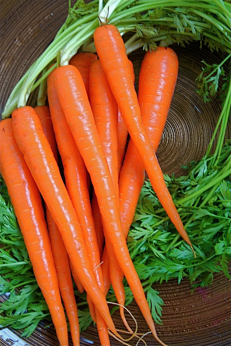 Carrot Fruit Or Vegetable  242 best images about Fruits & Ve ables on Pinterest