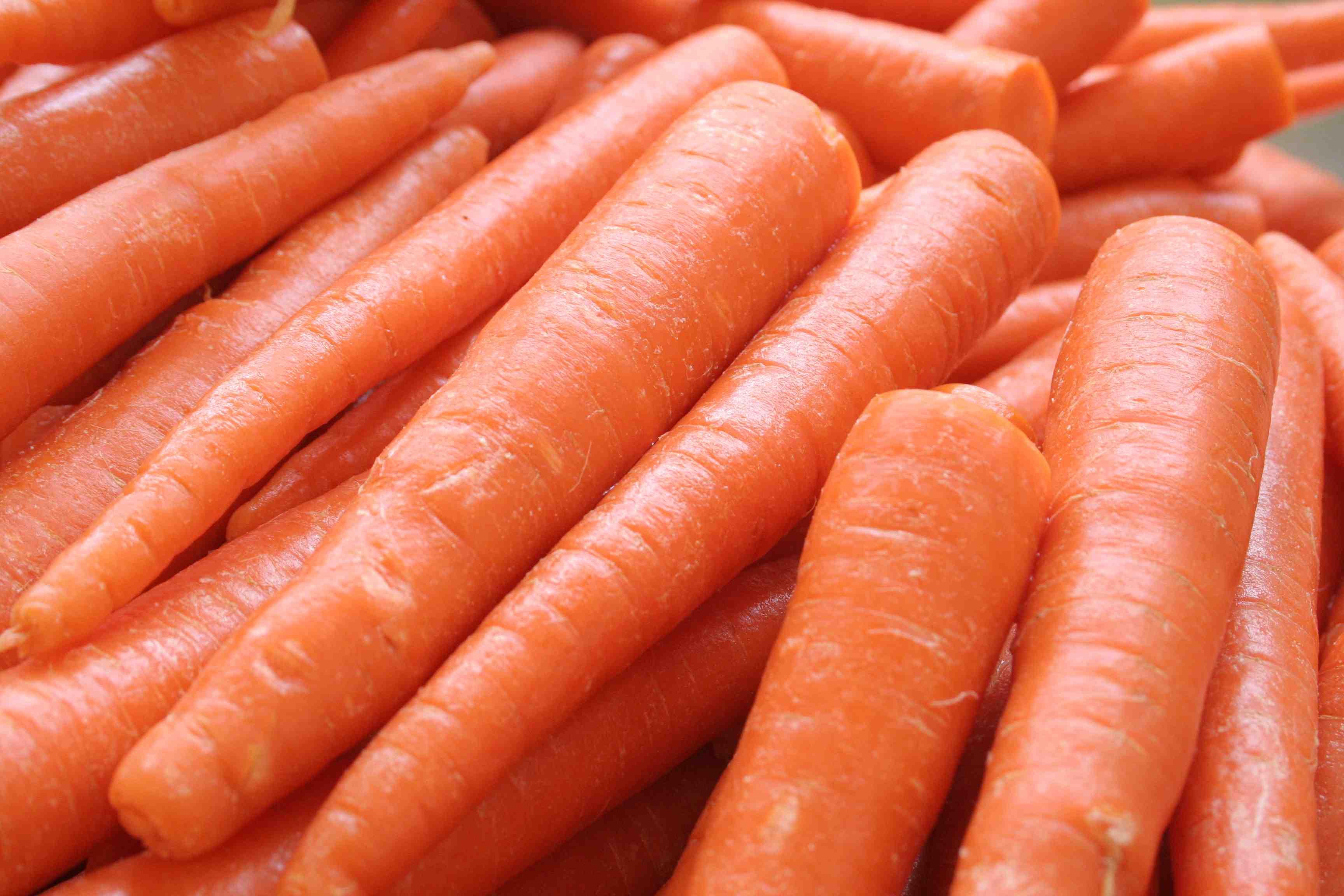 Carrot Fruit Or Vegetable  Carrot Fruit Ve able