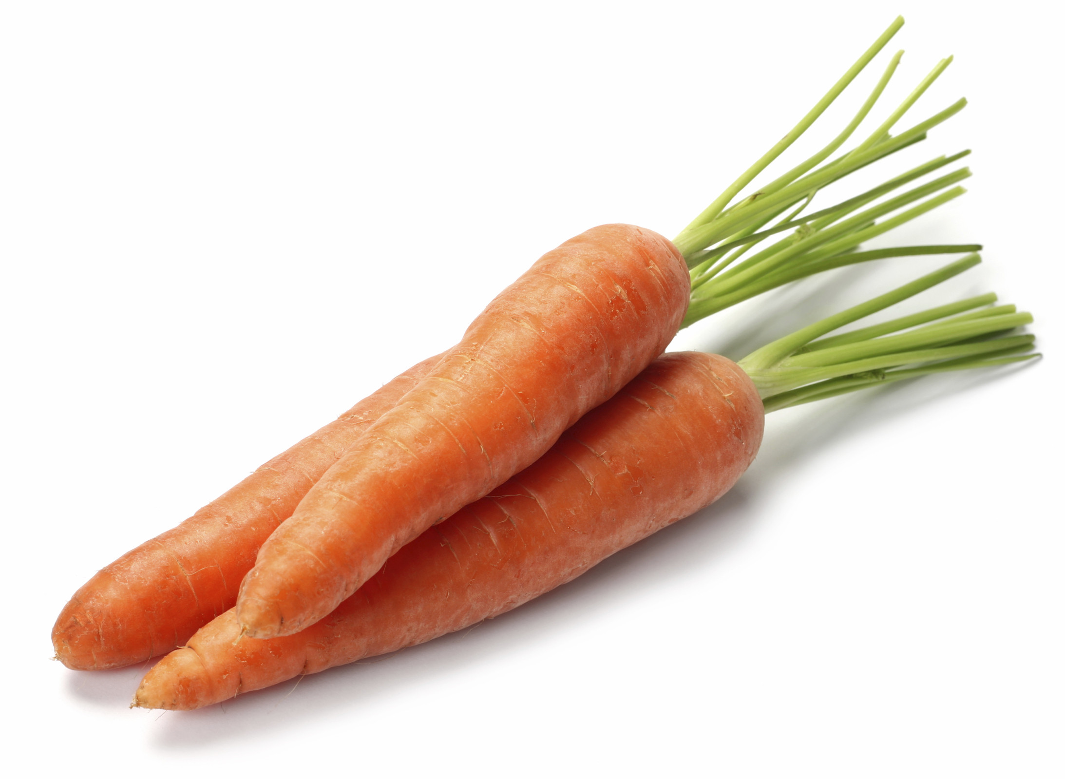 Carrot Fruit Or Vegetable  Boost the Bottom Line with Carrots