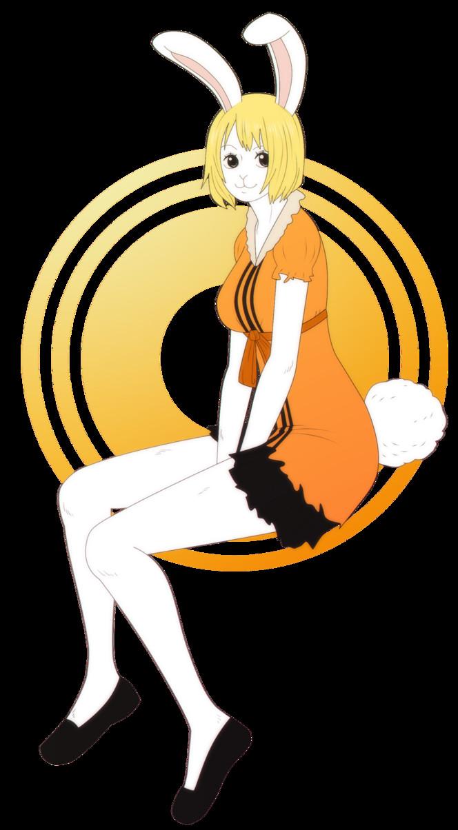 Carrot One Piece  OP Carrot by Kaschra on DeviantArt