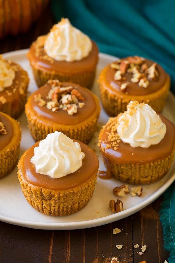 Cheesecake Cupcake Recipe  Pumpkin Cheesecake Cupcakes with Salted Caramel Sauce