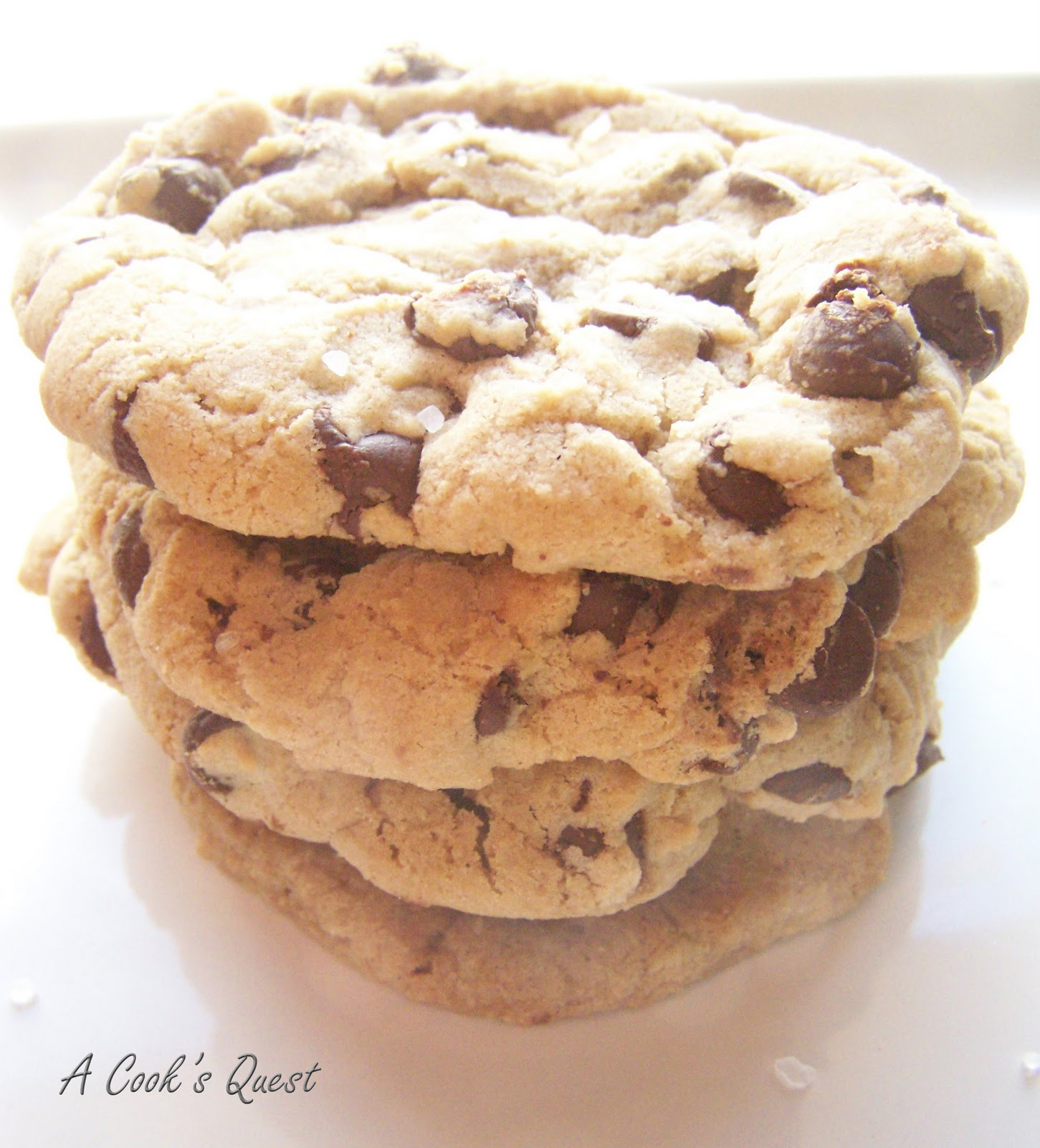 Chewy Chocolate Chip Cookies Recipe  A Cook s Quest Thick and Chewy Chocolate Chip Cookies