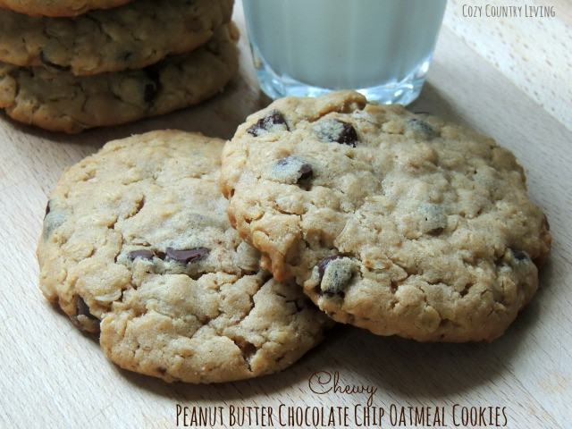 Chewy Peanut Butter Oatmeal Cookies  Chewy Peanut Butter Chocolate Chip Oatmeal Cookies