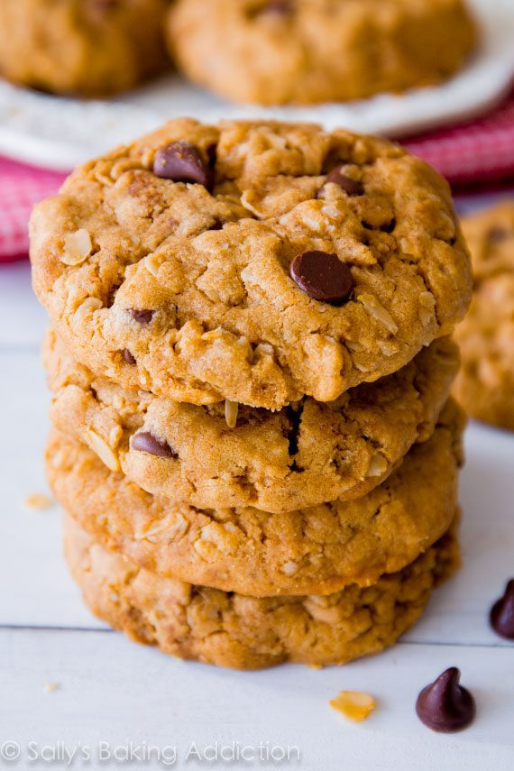 Chewy Peanut Butter Oatmeal Cookies  Flourless Peanut Butter Oatmeal Cookies Sallys Baking