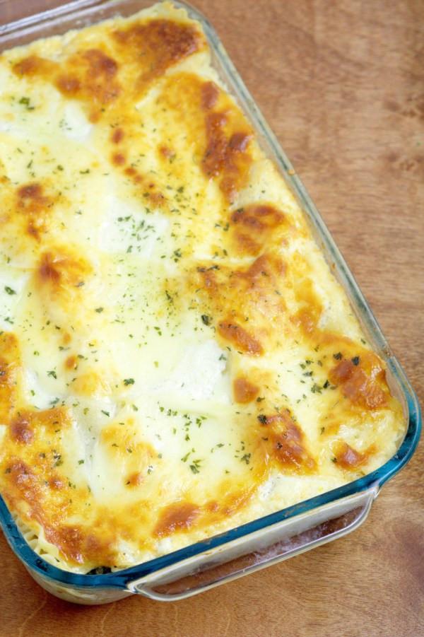 Chicken Alfredo Lasagna  25 Lasagna recipes