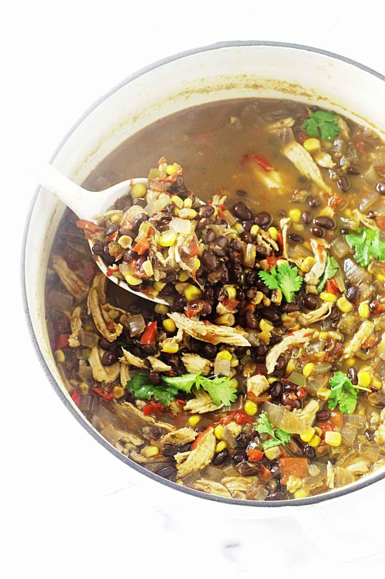 Chicken Black Bean Soup  Southwest Black Bean Chicken Soup Savor the Best