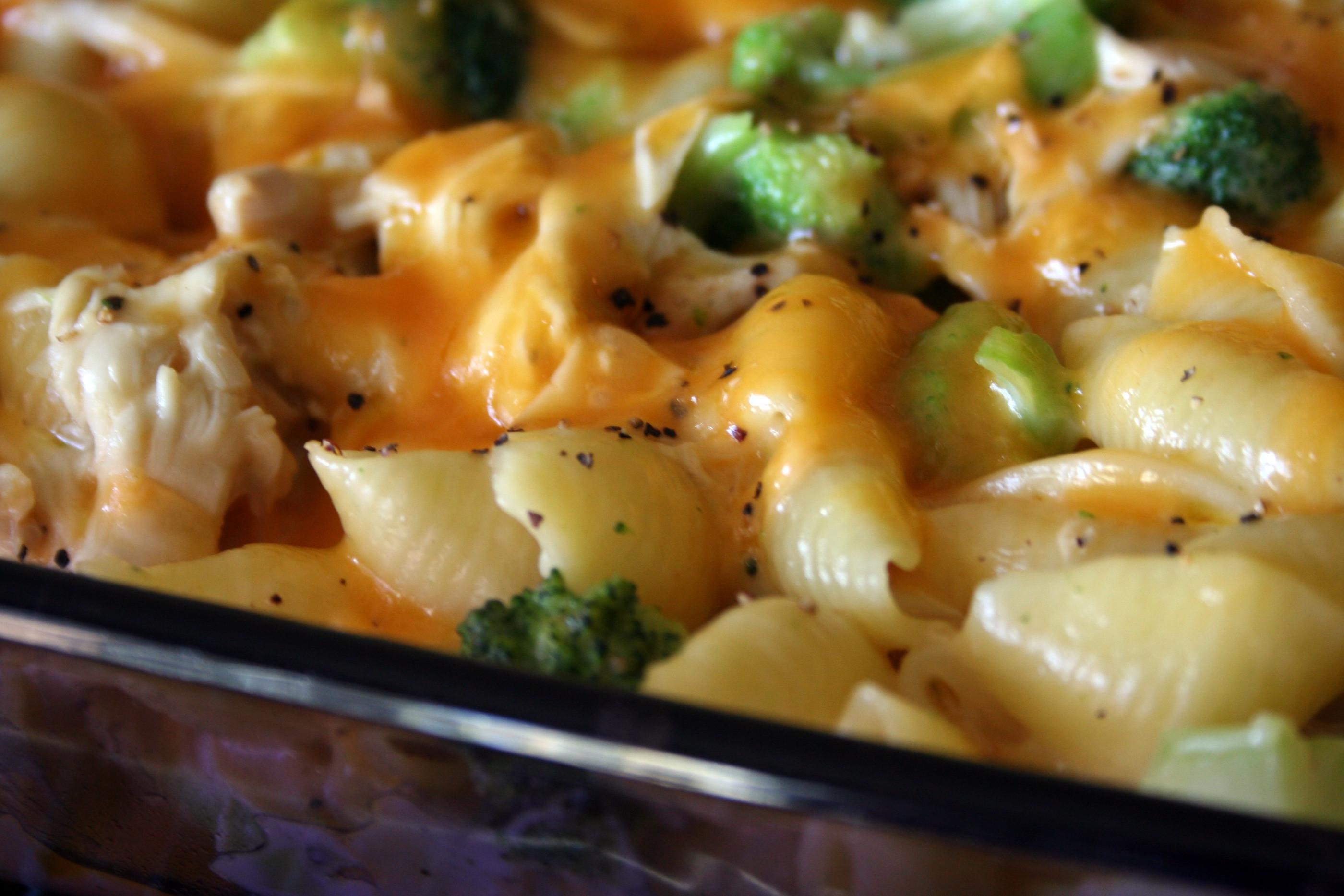 Chicken Broccoli Recipe  Alfredo Shells Chicken Broccoli and Cheese
