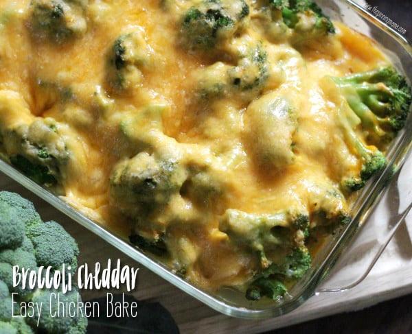 Chicken Brocolli And Cheese Casserole  Broccoli Cheese Chicken Bake Recipe Easy Dinner Idea