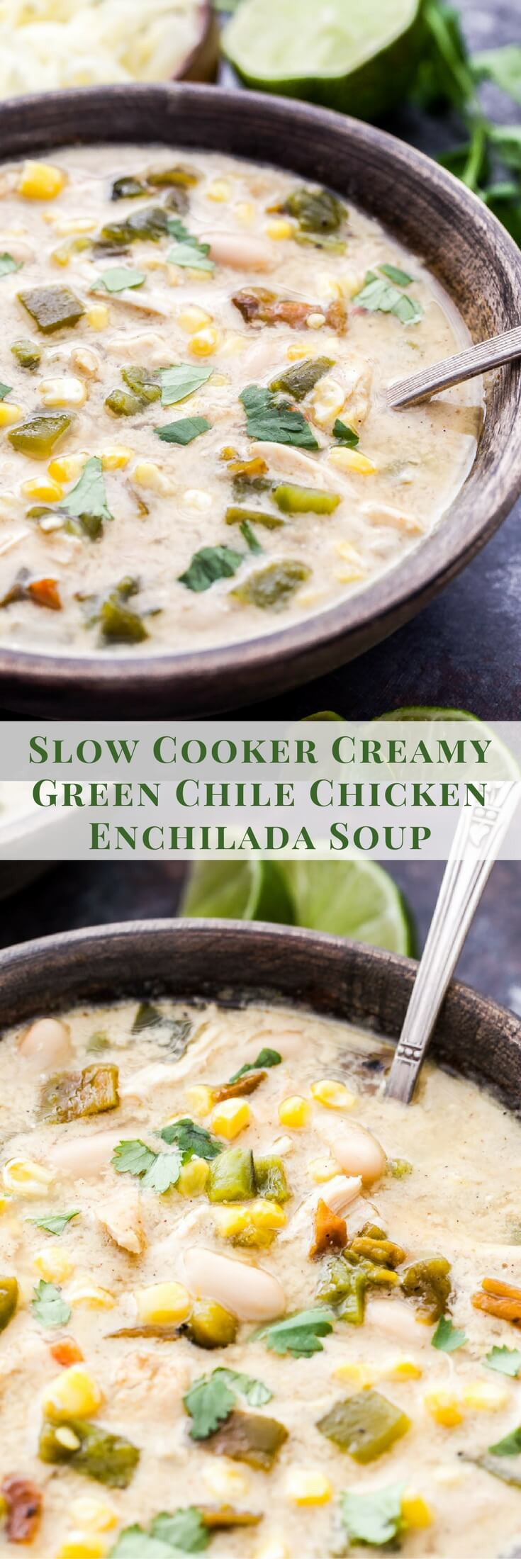 Chicken Chili Soup  Slow Cooker Creamy Green Chile Chicken Enchilada Soup