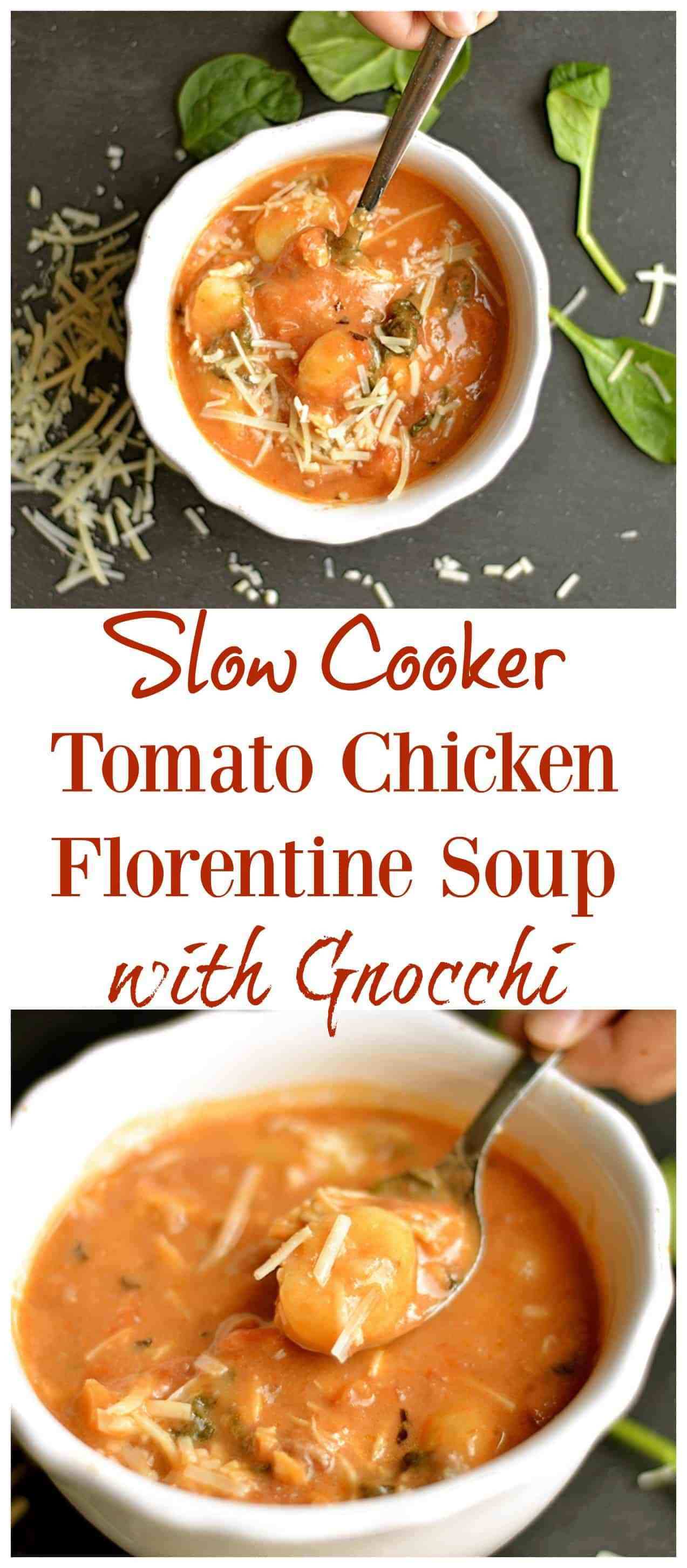 Chicken Florentine Soup  Slow Cooker Tomato Chicken Florentine Soup with Gnocchi
