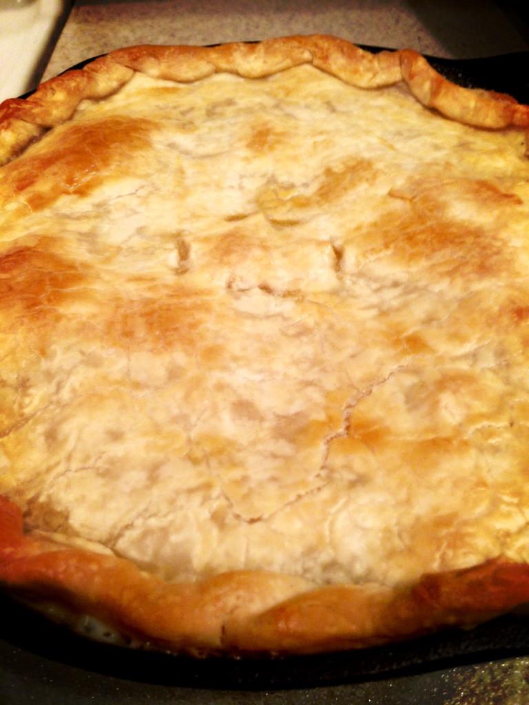 Chicken Pot Pie Crust Recipe  Super Easy Chicken Pot Pie