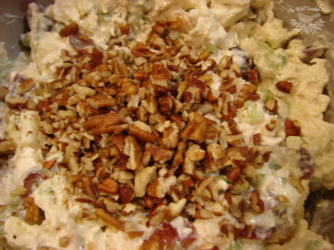 Chicken Salad Without Mayo  how to make chicken salad DriverLayer Search Engine