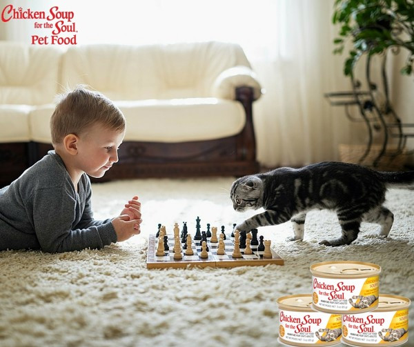 Chicken Soup For The Soul Submissions  Is Your Pet a Hero MyPetisMyHero Rascal and Rocco