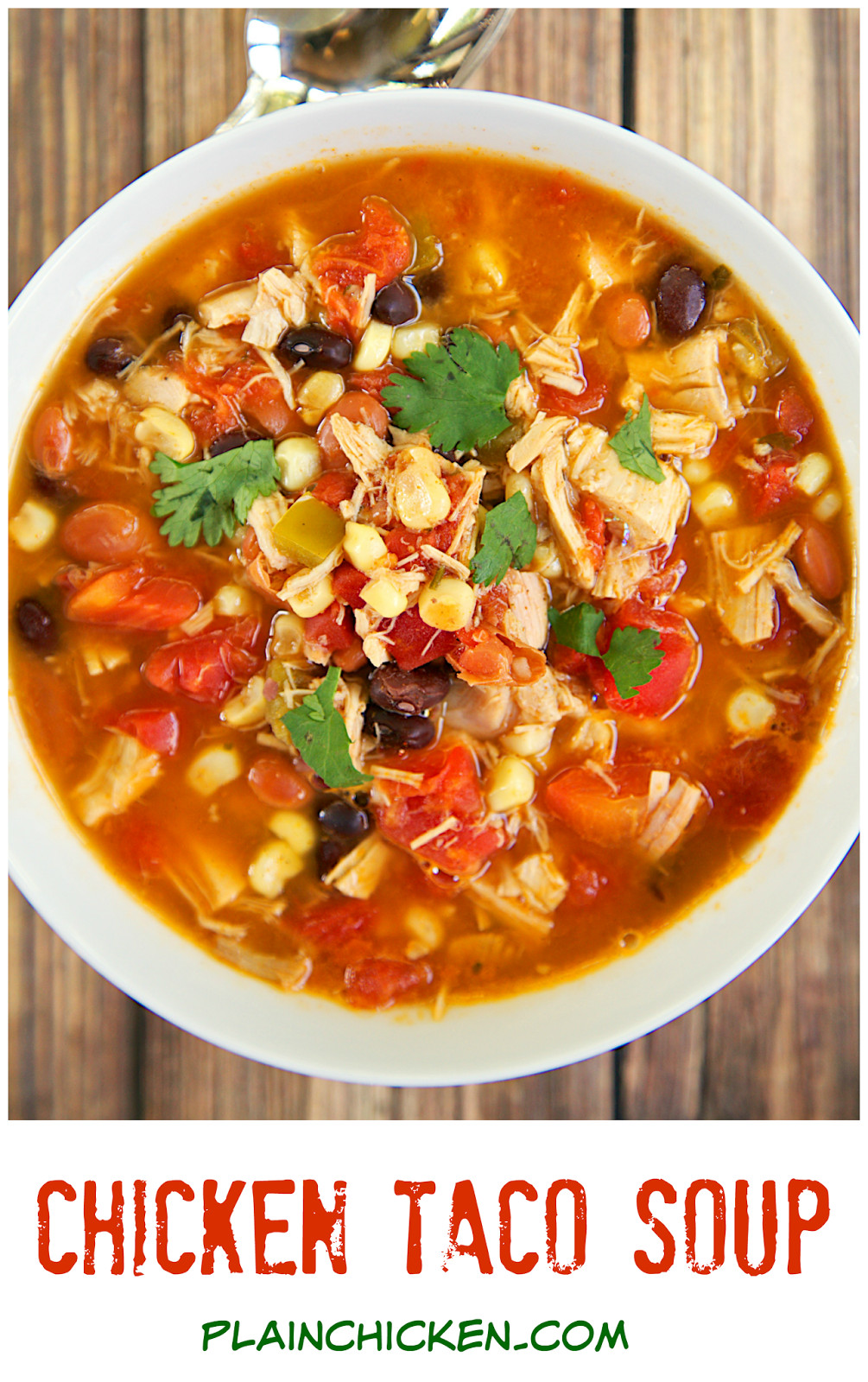 Chicken Taco Soup  Chicken Taco Soup Two Ways Plain Chicken