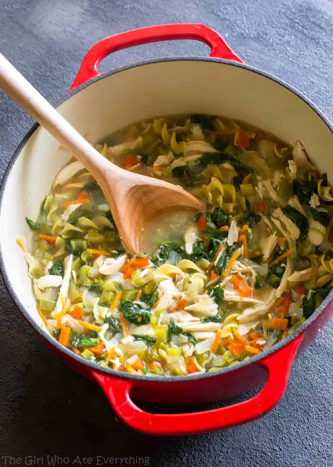 Chicken Vegetable Soup Recipes  Healthy Ve able Chicken Soup The Girl Who Ate Everything