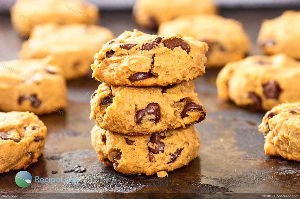 Chickpea Chocolate Chip Cookies  Peanut Butter Chocolate Chip and Chickpea Cookies Gluten