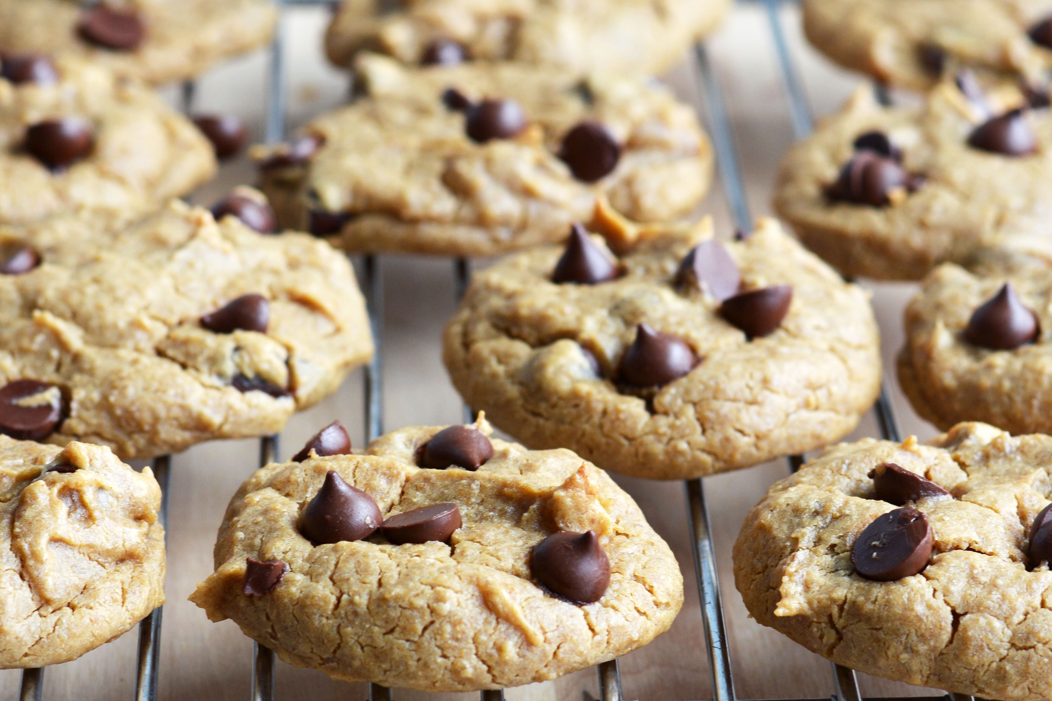 Chickpea Chocolate Chip Cookies  The BEST Chickpea Chocolate Chip Cookies Vegan & Gluten