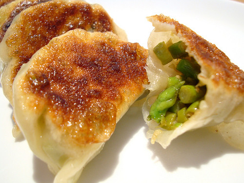 Chinese Fried Dumplings  How To Make Chinese Steamed and Pan Fried Dumplings