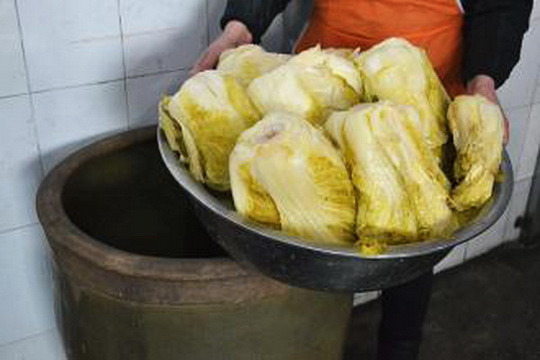 Chinese Pickled Cabbage  Suan Cai Jiaozi – New Year's Soul in Dongbei China