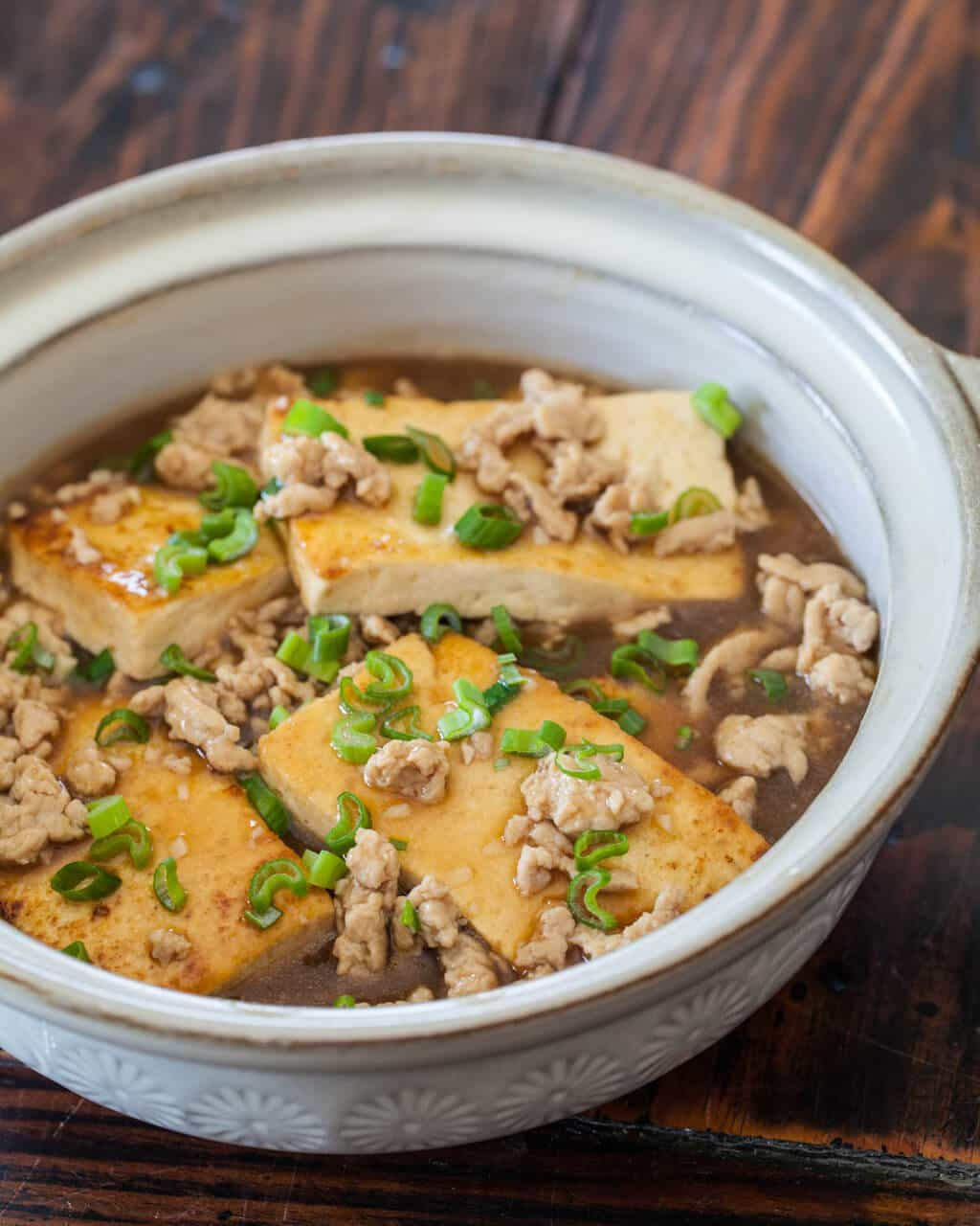 Chinese Tofu Recipes  Braised Tofu with Ground Pork Steamy Kitchen Recipes
