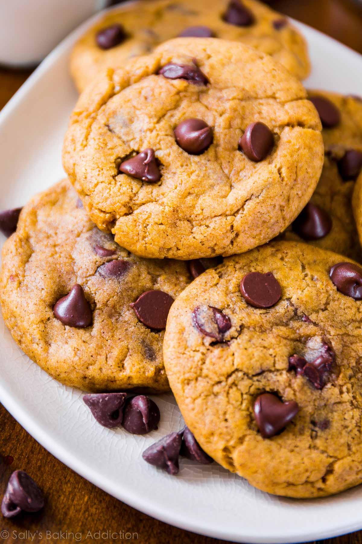 Chocolate Chip Cookies Allrecipes  Pumpkin Chocolate Chip Cookies Sallys Baking Addiction