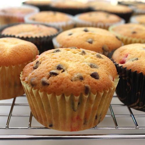 Chocolate Chip Cupcakes  Chocolate Chip Cherry Cupcakes – SugaryWinzy