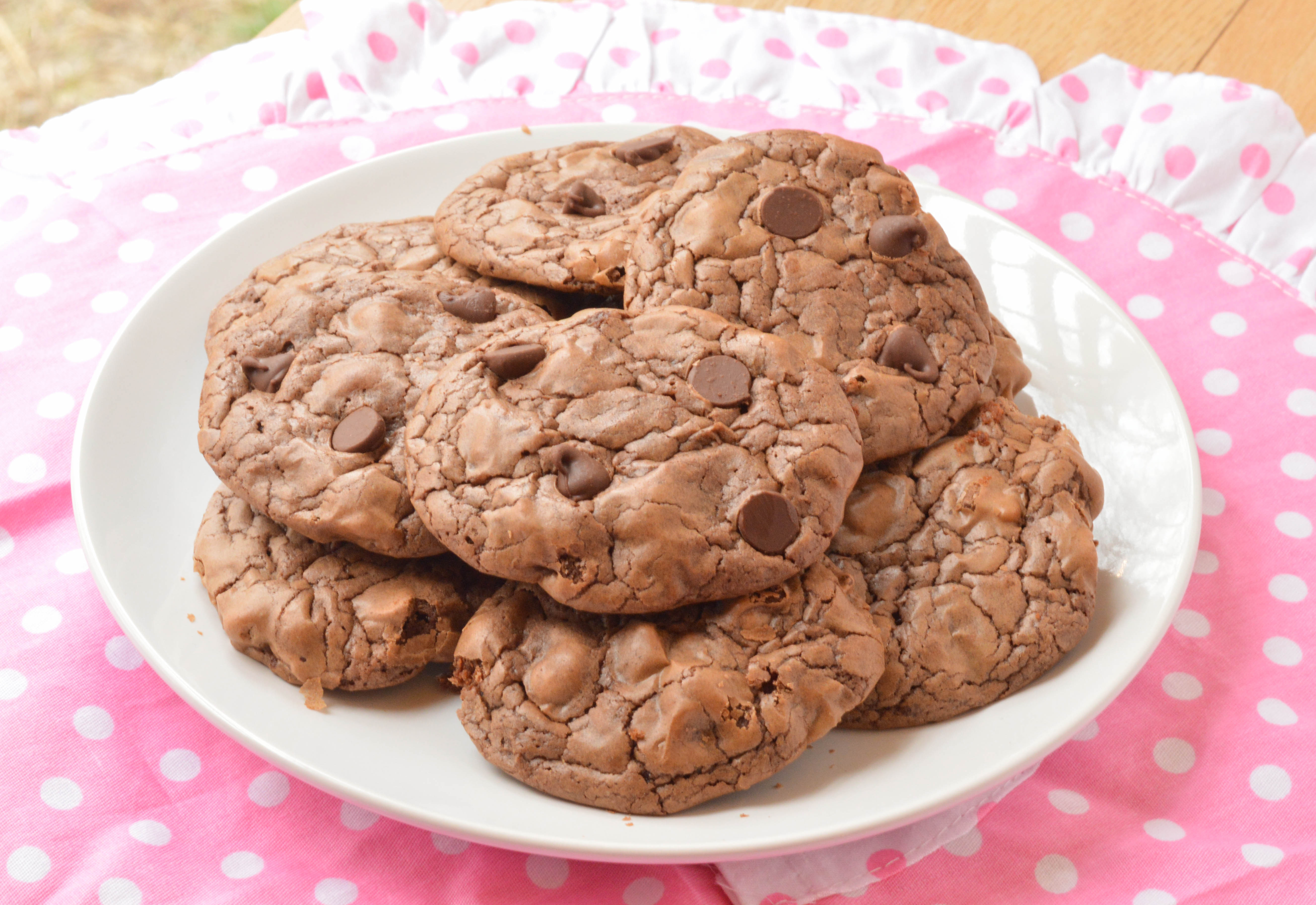 Chocolate Fudge Cookies  Double Chocolate Fudge Cookies