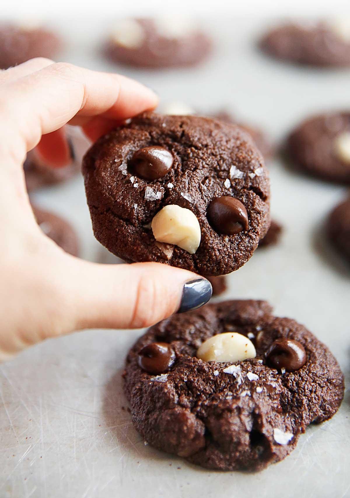 Chocolate Macadamia Nut Cookies  Double Chocolate Chunk Macadamia Nut Cookies Lexi s