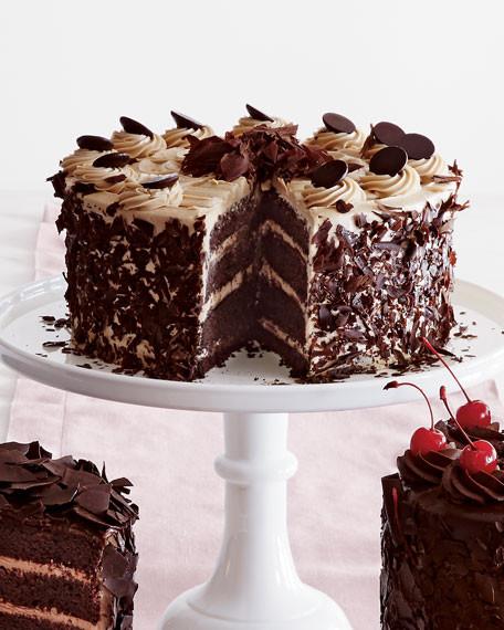 Chocolate Mocha Cake  Frosted Art Bakery Chocolate Mocha Cake