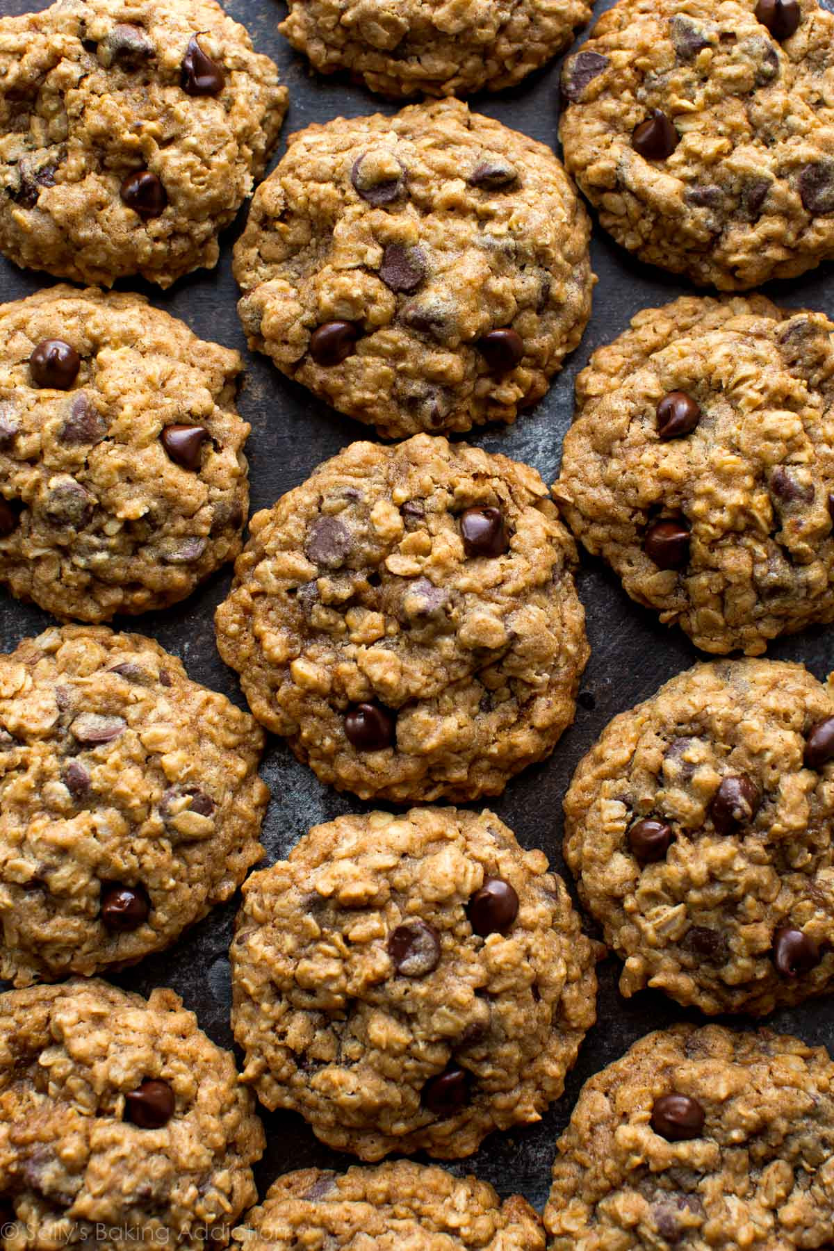 Chocolate Oatmeal Cookies  Soft & Chewy Oatmeal Chocolate Chip Cookies