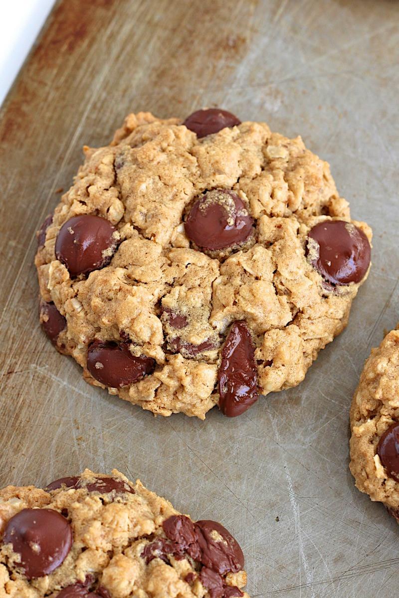 Chocolate Oatmeal Cookies  Flourless Oatmeal Chocolate Chip Cookies