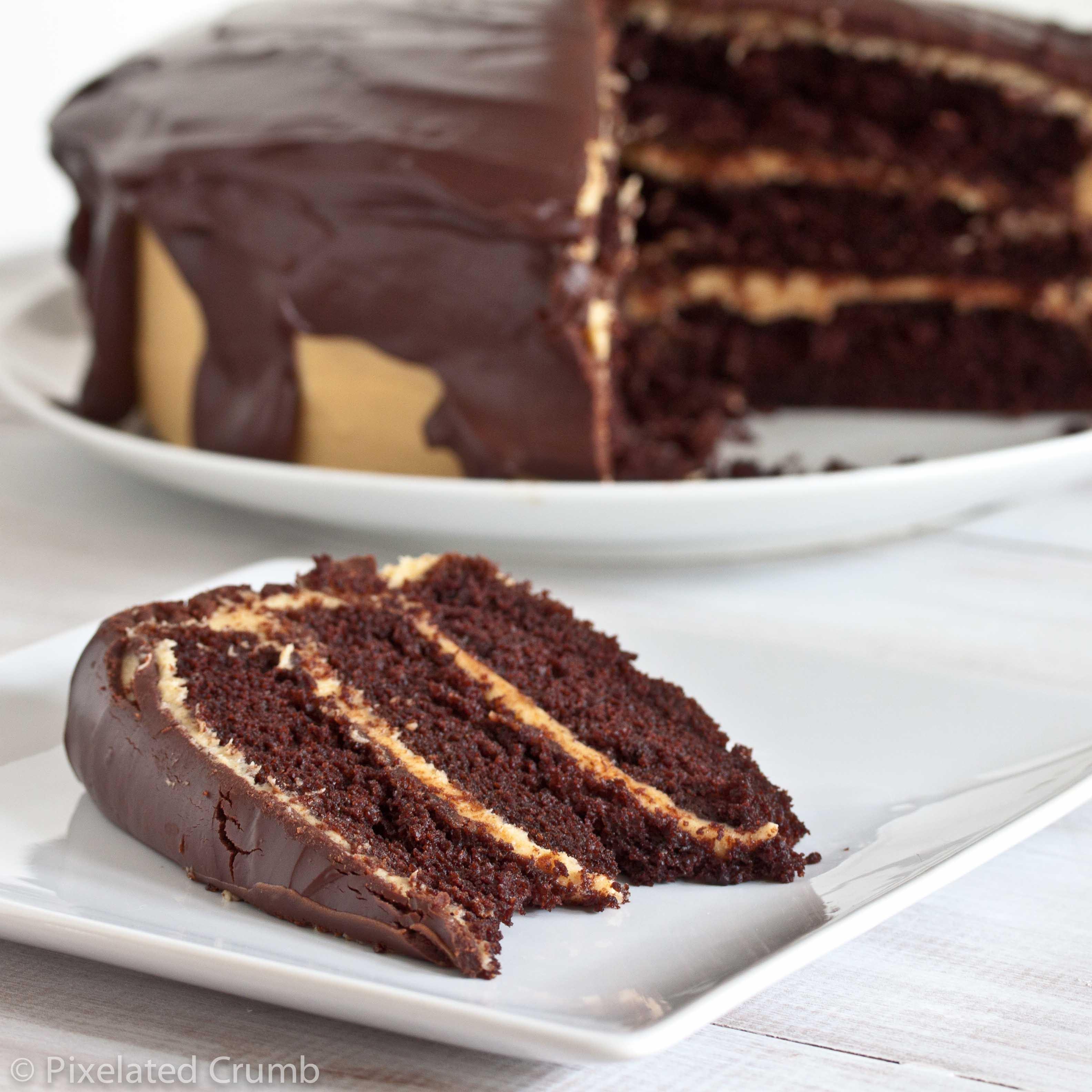 Chocolate Peanut Butter Cake Recipe  The Ultimate Chocolate Peanut Butter Cake