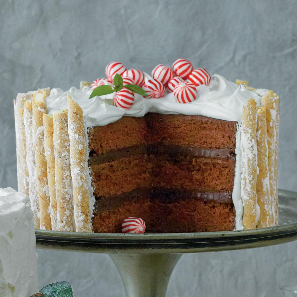 Chocolate Peppermint Cake  Peppermint Hot Chocolate Cake Recipe