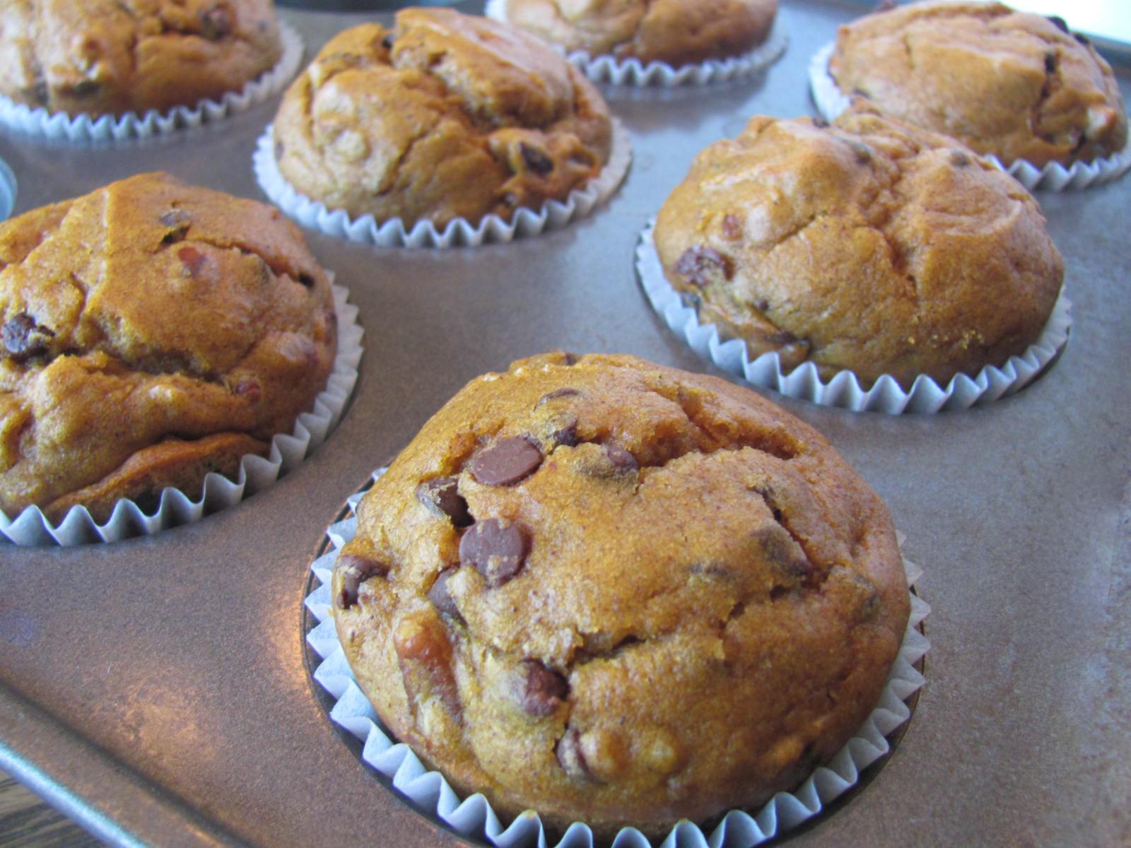 Chocolate Pumpkin Muffins  Sprinkle Some Sunshine pumpkin chocolate chip muffin party
