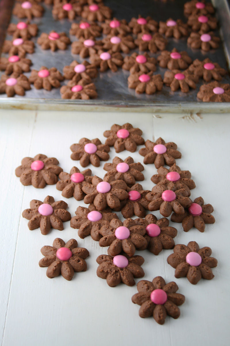 Chocolate Spritz Cookies  Chocolate Spritz Cookies s and for