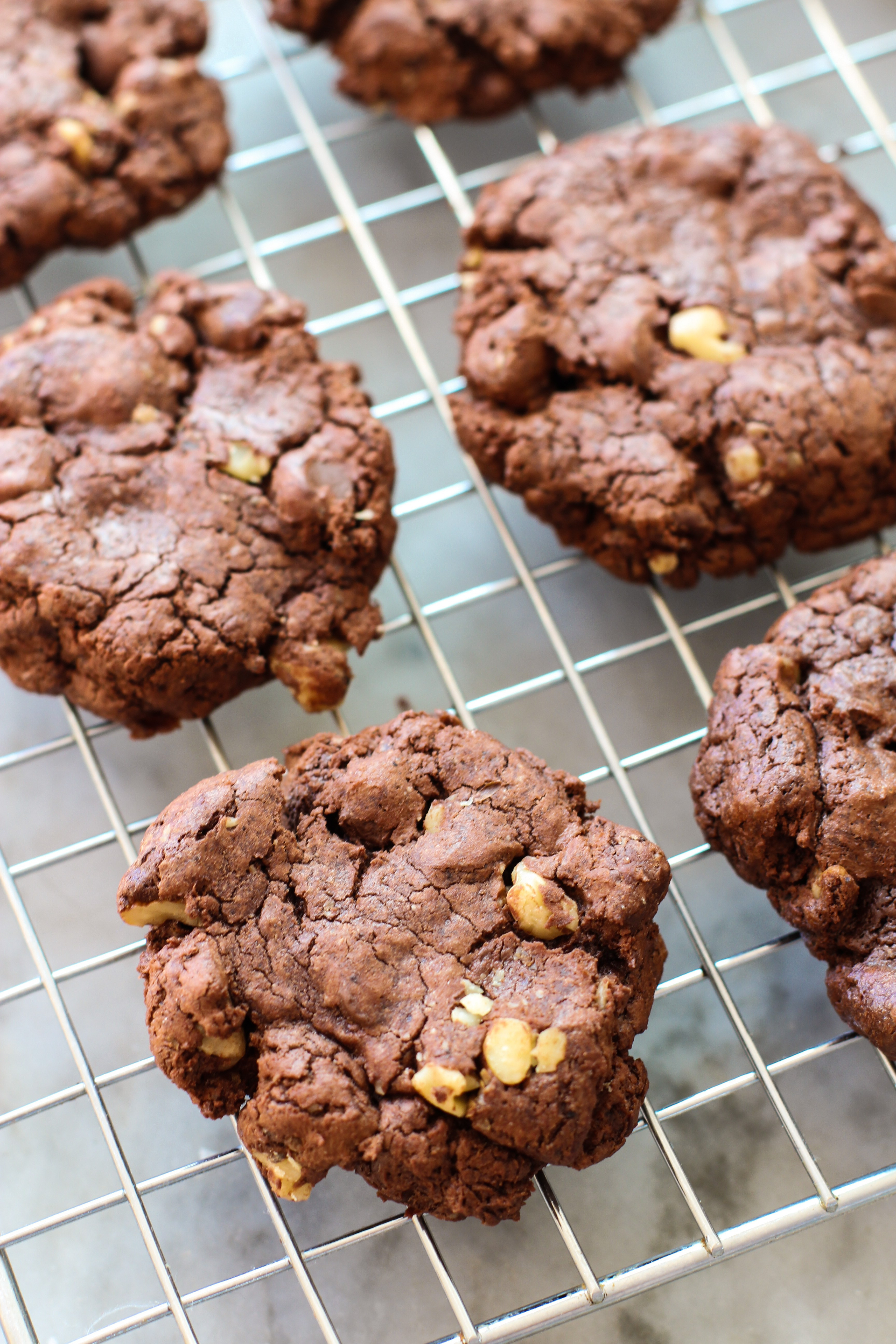 Chocolate Walnut Cookies  double chocolate walnut cookies and the great food blogger