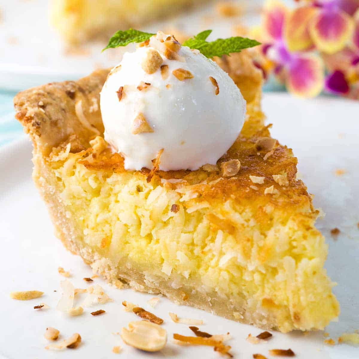 Coconut Custard Pie Recipe  Coconut Custard Pie Recipe