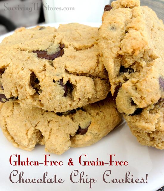 Coconut Flour Chocolate Chip Cookies  Gluten Free & Grain Free Chocolate Chip Cookies