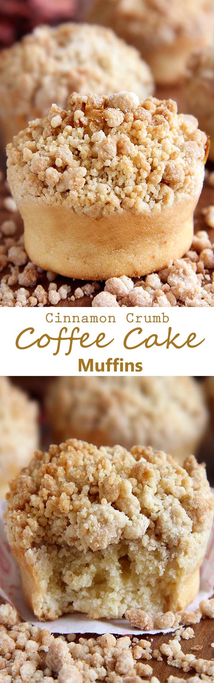 Coffee Cake Muffins  Cinnamon Crumb Coffee Cake Muffins Sugar Apron