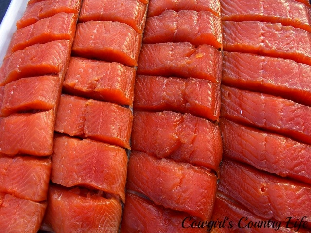 Cold Smoked Salmon  Cowgirl s Country Life Cold Smoking and Canning Salmon