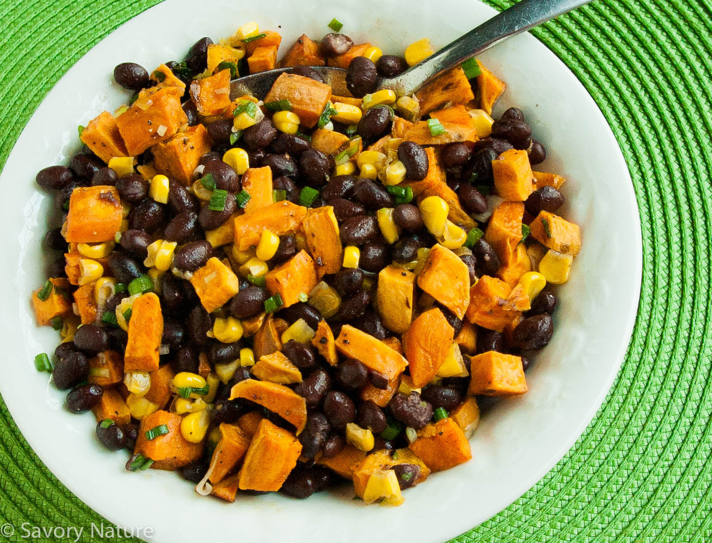 Corn And Black Bean Salad  Sweet Potato Black Bean and Corn Salad Savory Nature