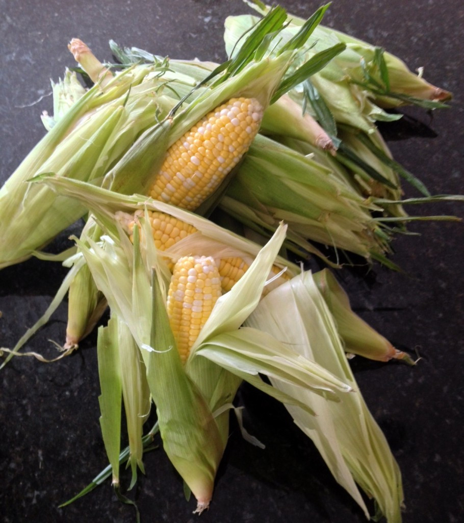 Corn In Husk On Grill  Grilled in Husk Corn on the Cob