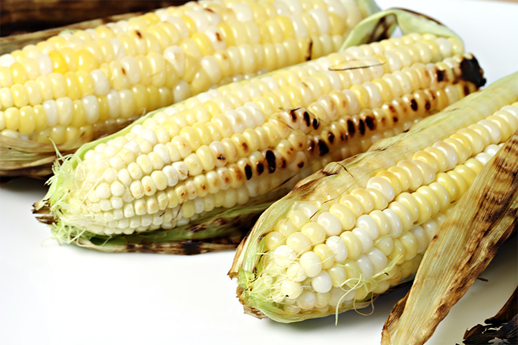 Corn In Husk On Grill  In their husks grilled corn on the cob