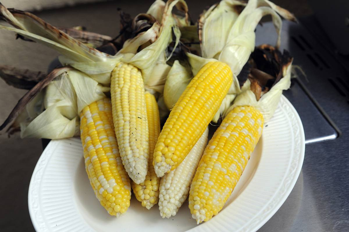 Corn On Cob On Grill  Grilled Corn on the Cob