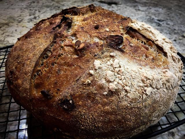 Cranberry Walnut Bread  WALNUT CRANBERRY SOURDOUGH BREAD