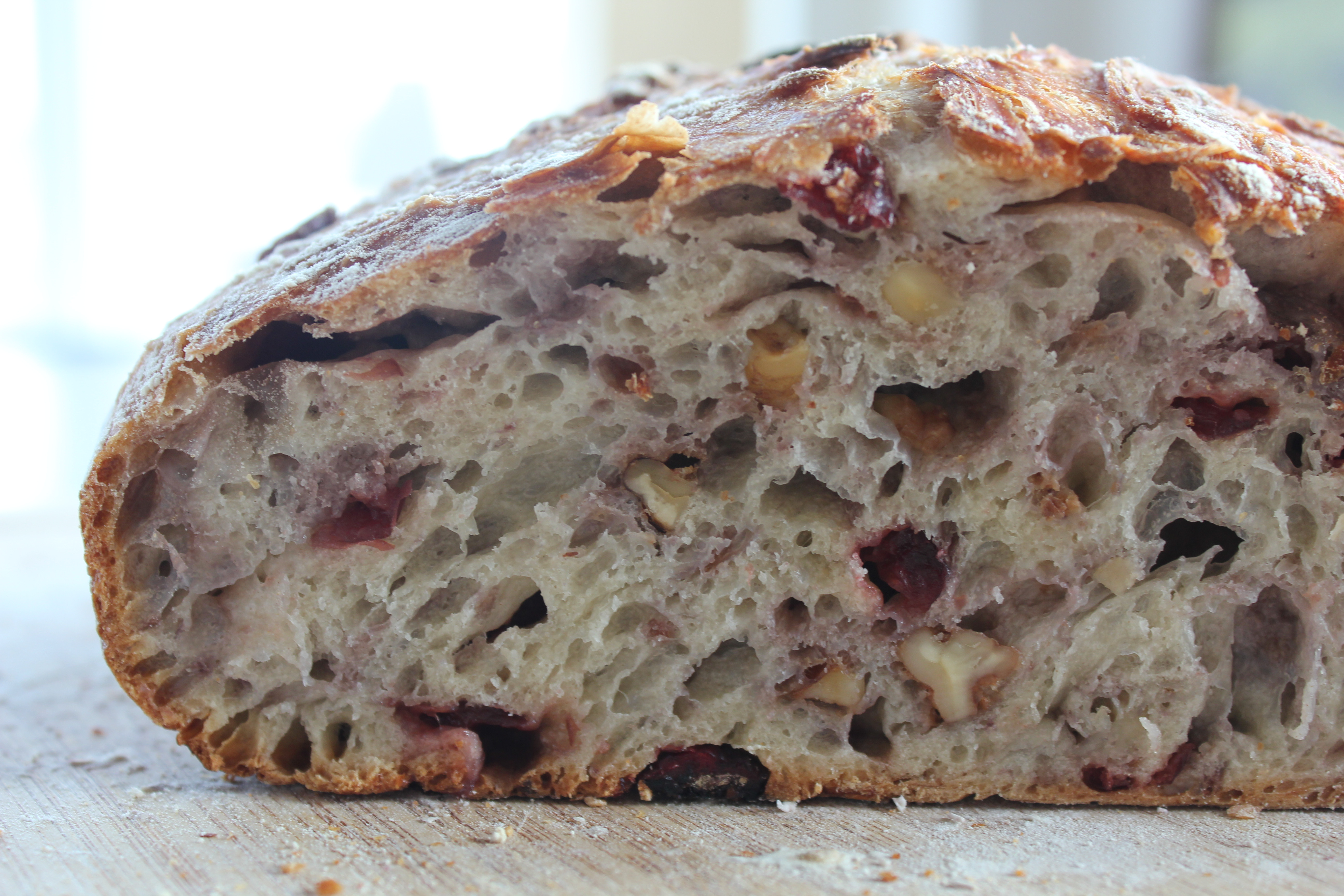 Cranberry Walnut Bread  whole grain cranberry walnut bread