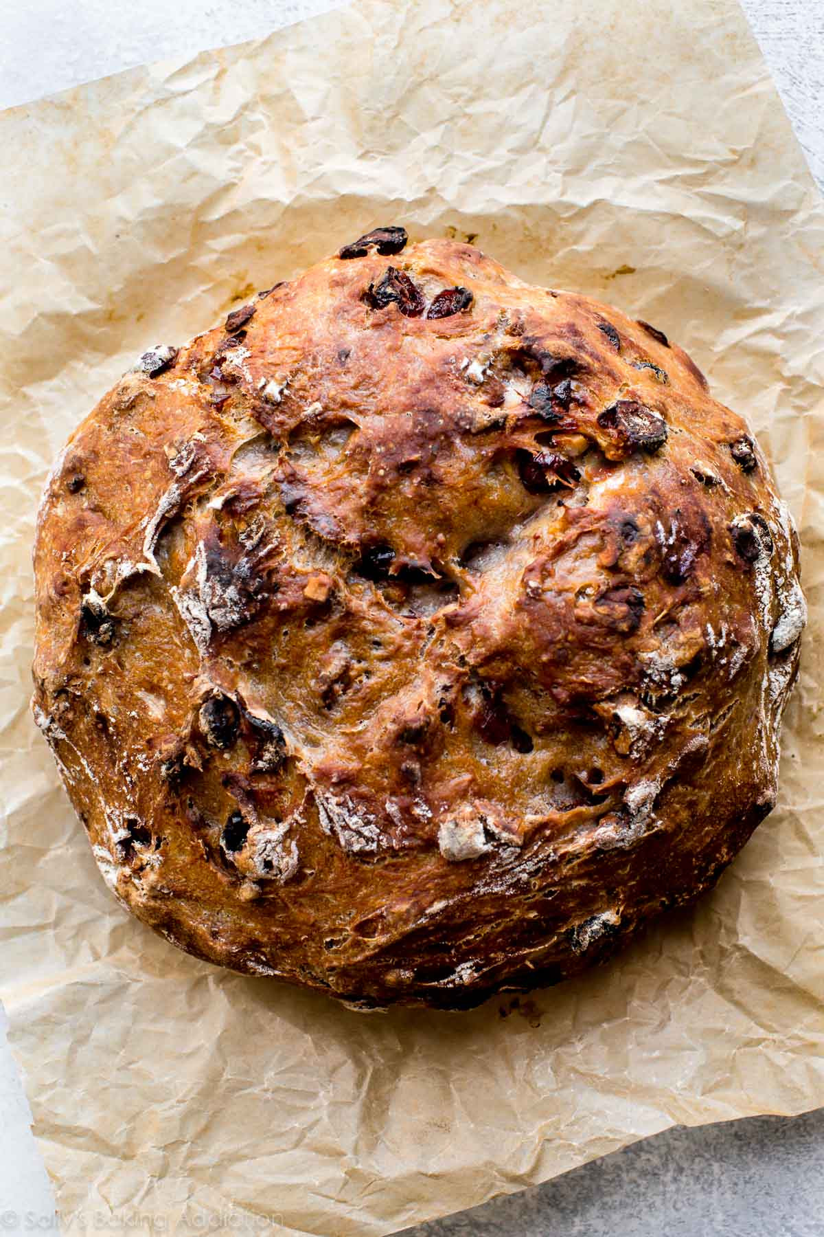 Cranberry Walnut Bread  No Knead Crusty Cranberry Nut Bread Sallys Baking Addiction