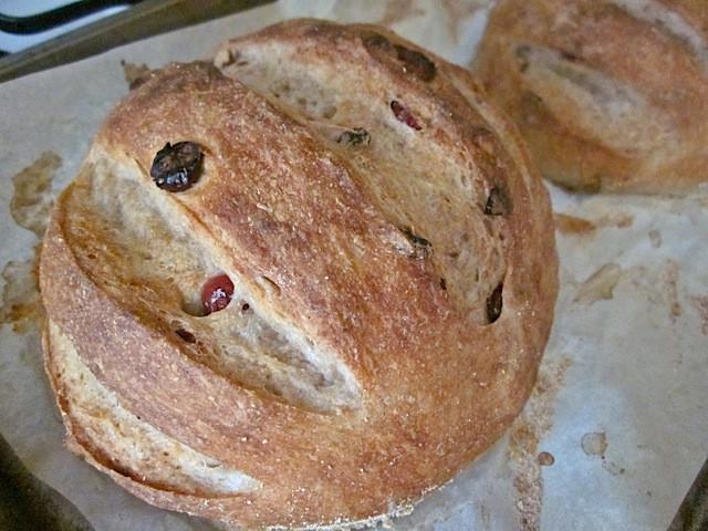 Cranberry Walnut Bread  Cranberry Walnut Bread Bud Bytes