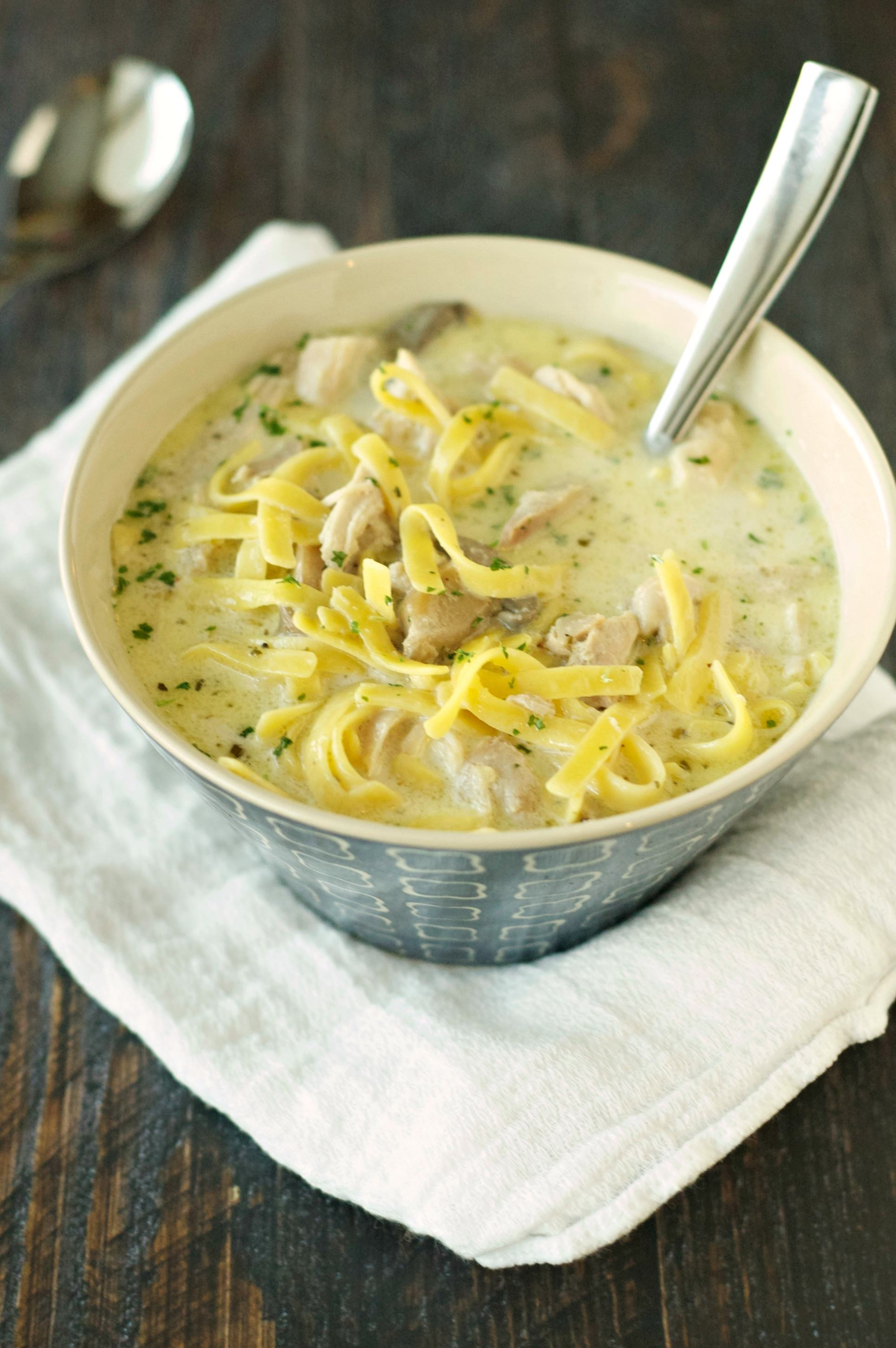 Creamy Chicken And Noodles  Slow Cooker Creamy Chicken Noodle Soup Slow Cooker Gourmet