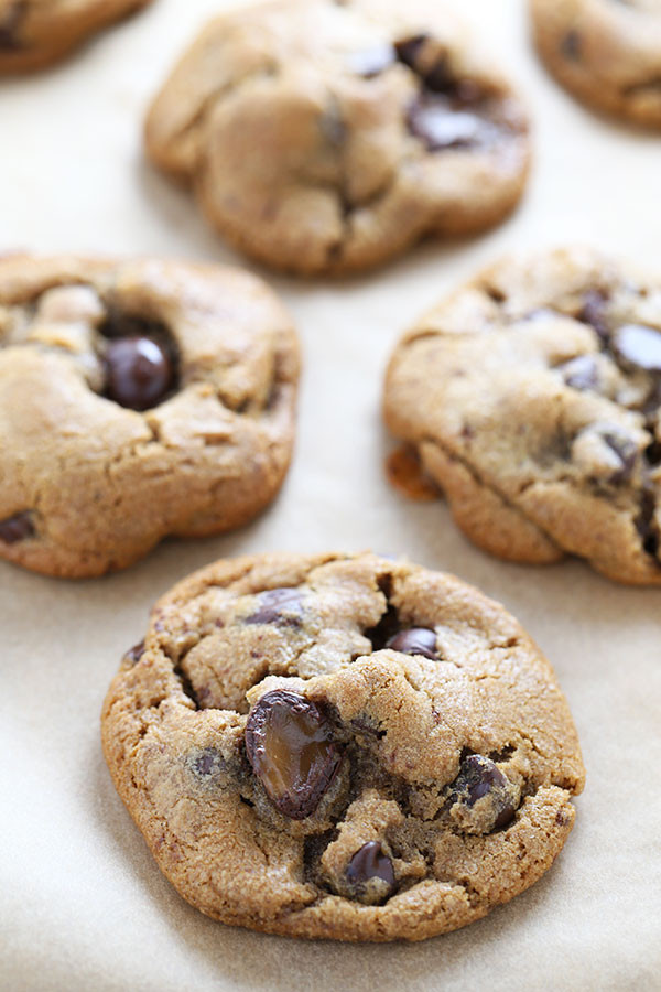 Crunchy Chocolate Chip Cookies  trader joe s crispy crunchy chocolate chip cookies ingre nts
